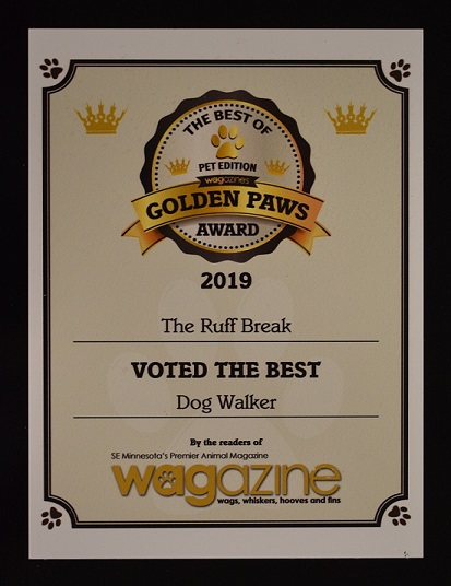 Voted 2019 Best Dog Walking Comany